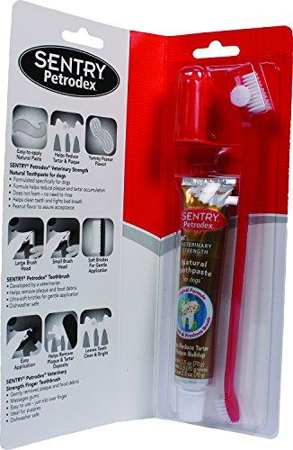 (Petrodex Sentry Natural Peanut Dental Kit For Dogs, 2.5-Ounce)