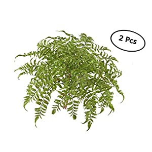 2 PCS Boston Fern Artificial Green Plants Fake Plastic Leaves Waterproof Shrubs Mimosa Venus Fern Persian Grass for Outdoor Home Table Kitchen Office Decorations 100