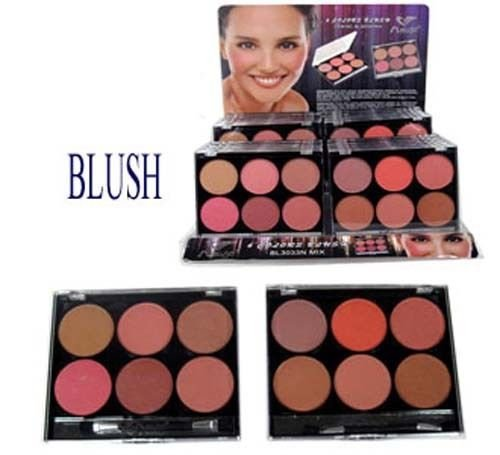 Cosmetics Makeup Blush Powder Bronzer + Brush 12 Colors 2 Palettes Lot (EBlush1) ()