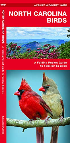 North Carolina Birds: A Folding Pocket Guide to Familiar Species (Wildlife and Nature Identification)