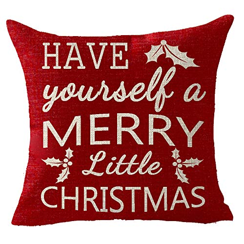 FELENIW Have Yourself A Merry Little Christmas Nuts Red Happy Winter Cotton Linen Decorative Throw Pillow Cover Cushion Case 18x18 inches (Have Yourself A Merry Little Christmas Notes)