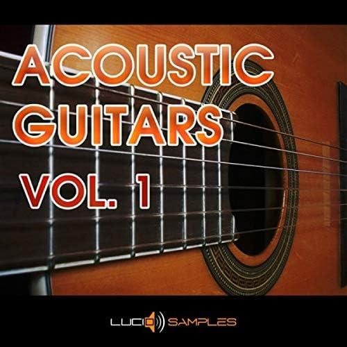 Guitarras acústicas vol. 1 es una colección de 128 lametas de ...