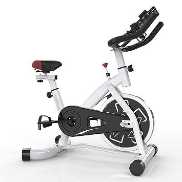 HLEZ Bicicleta estática Profesional, Pantalla LCD y Resistencia ...