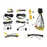 Brandmotion 9002-2910 Blind Spot Camera Monitoring System