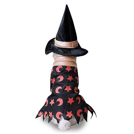 Lanlan Ting Halloween Bruja Capa Ropa Perro Gato Invierno, Mascota Cosplay Fiesta Divertido Disfraces Sudaderas Suéter Vestido para pequeños Animal ...