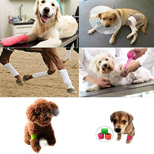 PanDaDa Pet Bandage Self-stick Pet Dog Cat Injury Care Bandage Non-slip Puppy Health Care Bandage by PanDaDa (Image #4)