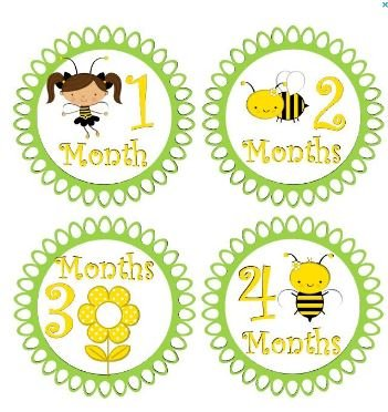 amazon com monthly stickers baby month stickers baby girl monthly