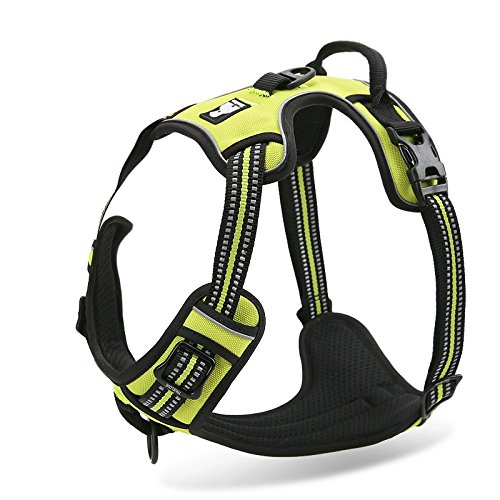 Chais Choice Front Range Harness product image