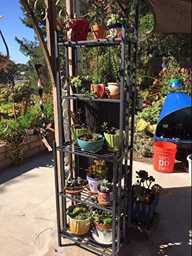 Versatile Vertical Victorian Style 5 Tier Standing Narrow Baker Rack, Planter Stand Storage Shelf for Indoor with Iron Frame, Balcony Shelving Unit, Rustproof Organizer for Corner, Plant Shelves by Nova Natural (Image #2)