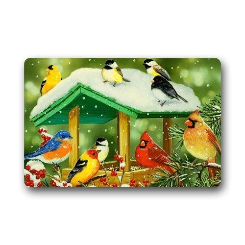 Xu Xugong Doormat Painting Birdhouse Many Colorful Bird Indoor/Outdoor/Front Door/Bathroom Mats Floor Mat 23.6