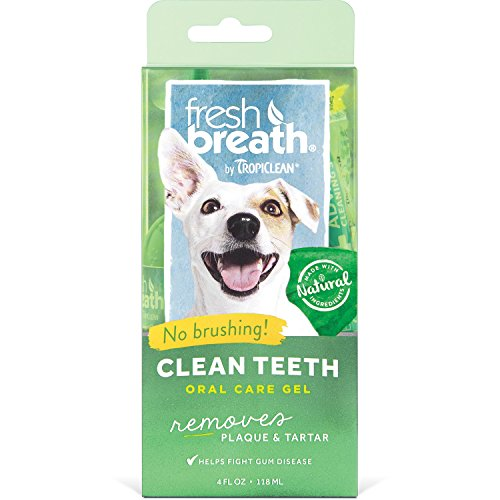 Pet Oral Gel - Tropiclean Fresh Breath No Brushing Dental Care Plaque Remover Gel For Dogs, 4 oz, PLUS DENTAL CHEW