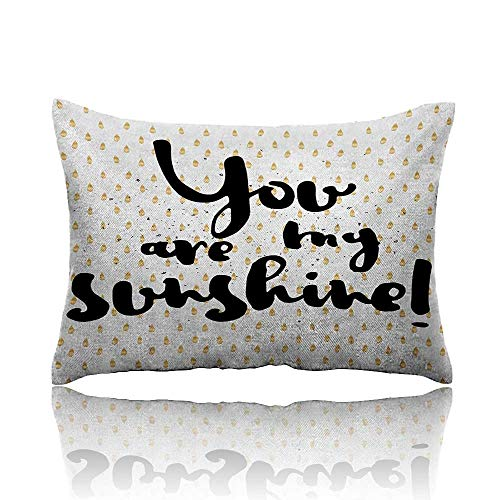 - homehot Quote Mini Pillowcase Sunshine Inscription Over Big Retro Dotted Background Wisdom Life Message Print Fun Pillowcase 20