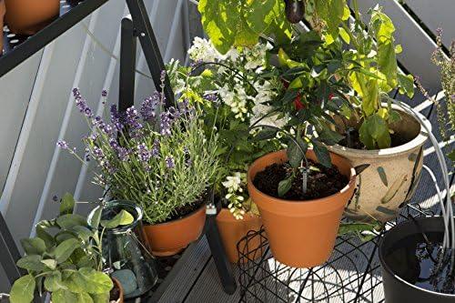 Gardena 1265-20 Set de riego en vacaciones city gardening, para un ...