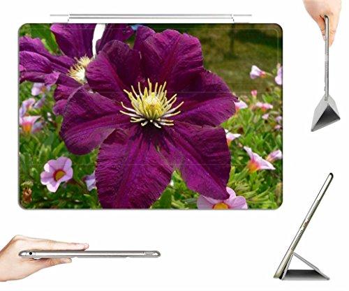 iRocket iPad 2/3/4 Case + Transparent Back Cover, GARNET FLOWER, [Auto Wake/Sleep Function] - Garnet Nature Flower