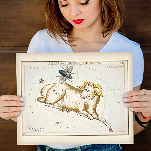 Aries Zodiac Antique Constellation Art Print - 11x14 Unframed Art Print - Great Home Decor or Gift to Astrology Enthusiasts