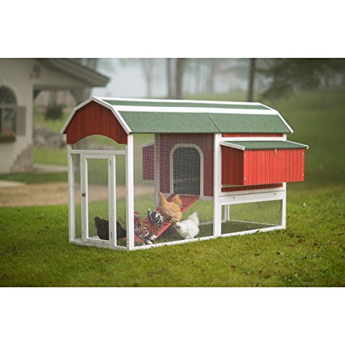 chicken coop for 8 chickens - 8