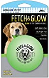 Fetch and Glow Ball – Large, My Pet Supplies