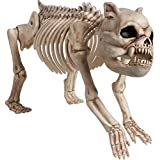 Halloween Cemetery Skeleton Dog