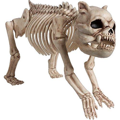 Halloween Cemetery Skeleton Dog]()