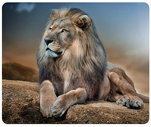 Price comparison product image Lion Relaxing Customized Rectangle Mousepad,  Mouse Pad
