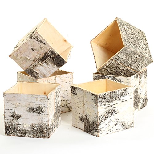 Koyal Wholesale Birch Wedding Square Cube Vases with Birch Bark 6-Pack, Real Wood Decorations, Centerpieces, Log Decor (4-Inch, Birch)