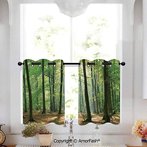 PUTIEN Forest Blackout Curtains Tailored Short Curtains for Bathroom Window Covering Kitchen,W52 x L36-Inch,Morning Sun Beams in Natural Spring Forest from The Sky in a Sunny Day