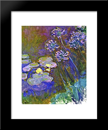 Water Lilies and Agapanthus 20x24 Framed Art Print by Monet, Claude ()