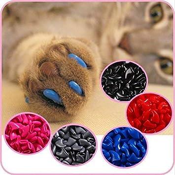 IMAKAR - Fundas para uñas de gato, 20 unidades, tubo de pegamento y aplicador incluidos No tóxico ...
