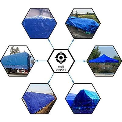 CARTMAN Multi-Purpose, Waterproof, Heavy Duty Poly Tarp Cover 10x12ft