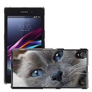 Etui Housse Coque de Protection Cover Rigide pour // M00135694 Birman Ojos azules del gato Primer // Sony Xperia Z1 L39 C6903 C6906 C6943 C6902