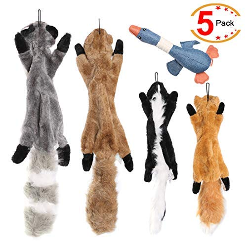 Legend Sandy Plush Animal Dog Toy Set, Value Pack 5 Squirrel Squeaky Toys Unstuffed Chew Toys with Storage Bag