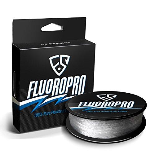 Line Clear Fishing (FISHINGSIR FluoroPro 100% Pure Fluorocarbon Coated Fishing Line - 329Yds Low Stretch High Strength Clear Fluorocarbon Fishing Line 2-50LB)
