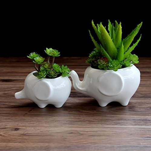 VHLL LanLan 2PCS Ceramic Flower Pot Elephant Shape Home Office Decoration New by VHLL