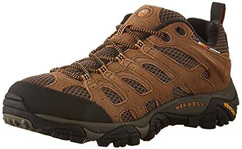 Merrell Men's Moab Ventilator Hiking Shoe,Earth,10 M
