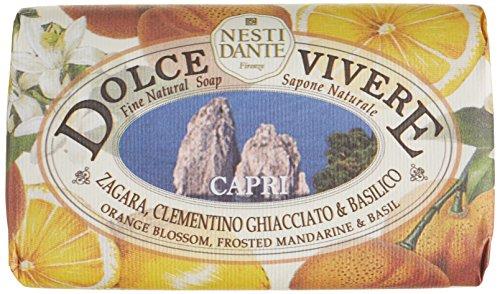 Nesti Dante Dolce Vivere Capri Bar Soap 250 Grams