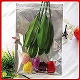 BeesClover 50pcs/lot 26cm38cm160mic Half Clear + VMPET Plastic Retail Bags Bag Food Jewelry Bag Show