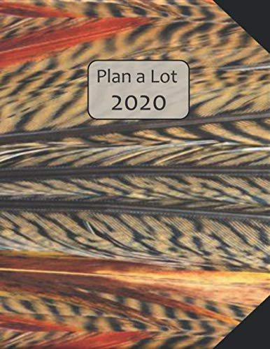 Plan a Lot  2020: Coloured Feathers Cover, 4 Months at a glance, Months on 2 pages, monthly Project planner, Weekly with tracking habits, to-do ... followed by 60+ grid pages; 8x11