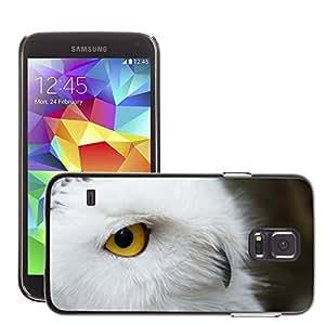 Etui Housse Coque de Protection Cover Rigide pour // M00117330 Pico Animal hermoso ojo de pájaro // Samsung Galaxy S5 S V SV i9600 (Not Fits S5 ACTIVE)