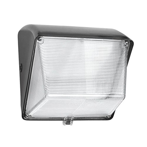 RAB WP1LED30 WALLPACK 30W COOL LED 120-277V WITH GLASS LENS BRONZE ()