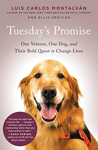 Amazon Tuesdays Promise One Veteran One Dog And Their Bold