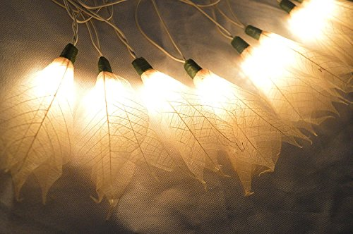 Natural Cream Flowers Handmade From Para Leaf – Lighting String Lights Set Lamp Decoration Patio Home Living Room Yard Garden Indoor and Outdoor for B…
