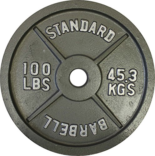 Barbell 6 Ga (Ader Olympic Plate (Gray Finished, 100 Lb))