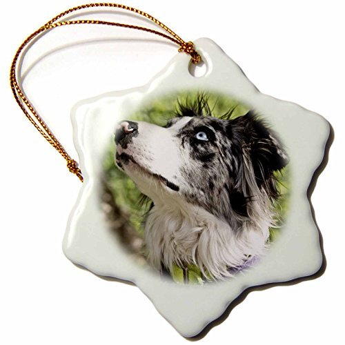 Vehfa Snowflake OrnamentLee Hiller Photography Pets Dogs Blue-Merle Border Collie inch Snowflake Porcelain Ornament (Dog Collie Angel Ornament)