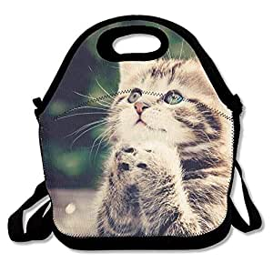 Pray Cute Kitten Animal Cat Insulated Lunch Bag - Neoprene Lunch Bag - Large Reusable Lunch Tote Bags for Women, Teens, Girls, Kids, Baby, Adults Portable Carry