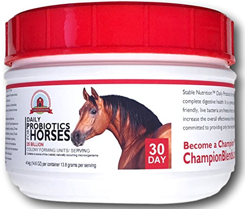 Cheapest Stable Nutrition THE top Probiotics for Horses (30 Day) Equine Digestion Aid Supplement - Digestive System guidance Check this out.
