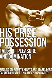 His Prize Possession: Tales of Pleasure and Domination (First Time Gay)