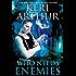 Who Needs Enemies (Harri Phillecky, PI Book 1)