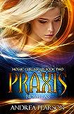 Praxis Novellas (Mosaic Chronicles Book 2)