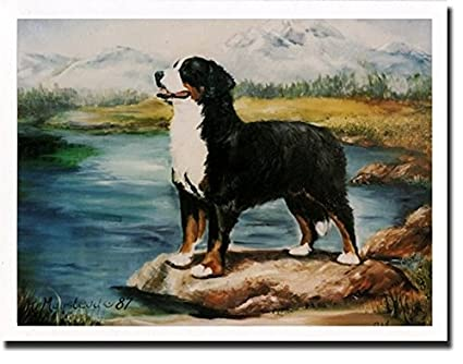Amazon com : Bernese Mountain Dog by Stream Notecards : Office Products