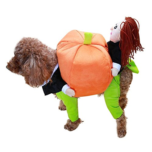 Custom Made Dog Halloween Costumes (LETSQK Funny Small Dogs Carrying Pumpkin Halloween Christmas Gift Fancy Jumpsuit Puppy Costume Clothes S)